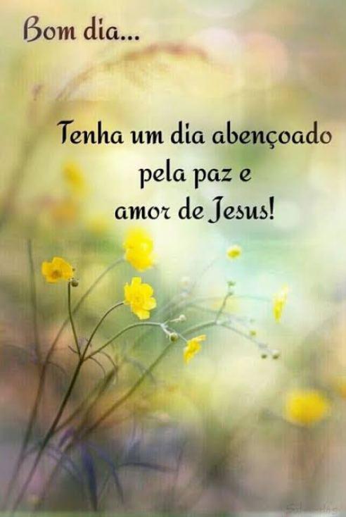 Bom Dia com a Paz de Deus para Abençoar seu Dia e muito Amor