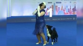 [VIDEO] Se llevó a cabo el Campeonato Europeo de Baile Canino