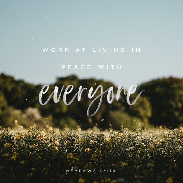 Hebrews 12:14 NLT