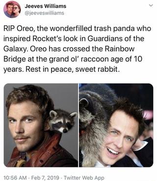 Rip Oreo The Wonderfilled Trash Panda Who Inspired Rocket S Look