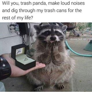 Will You Trash Panda Make Loud Noises And Dig Through My Trash