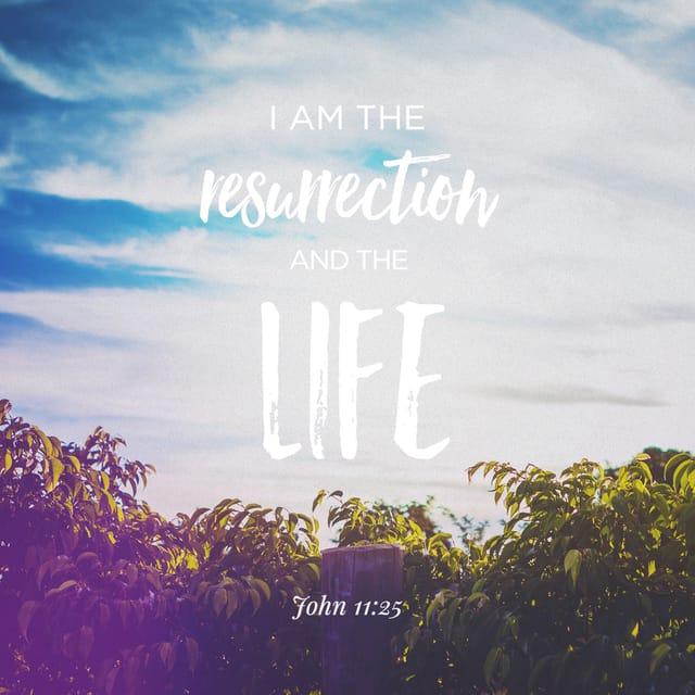 John 11:25 - https://www.bibl...
