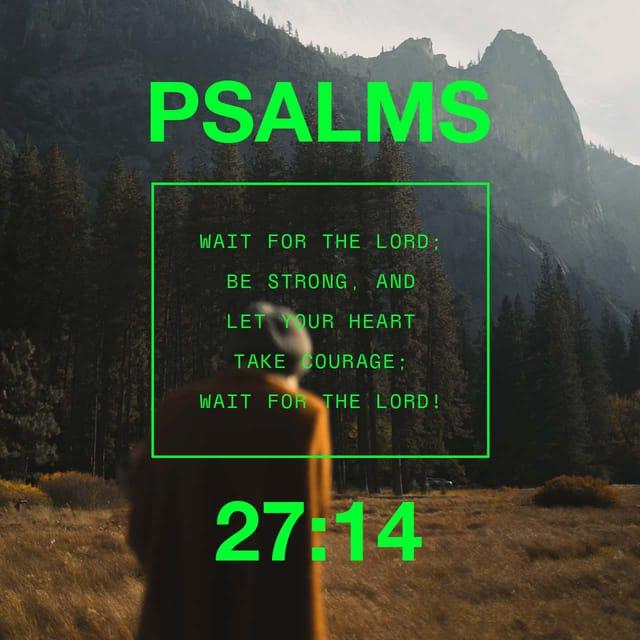 Psalms 27:14 - https://www.bibl...