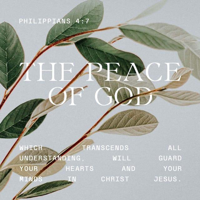 Philippians 4:7 - https://www.bibl...