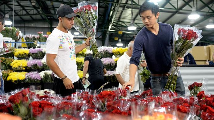 This Valentine's Day, it's a war of the roses when it comes to buying flowers for a loved one (AAP).
