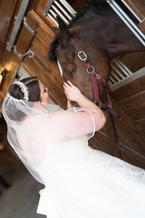 A bride pets a horse during her wedding at Hermitage Hill Farm in Waynesboro, Virginia.