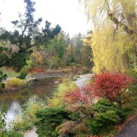 Fall View at Edwards Gardens