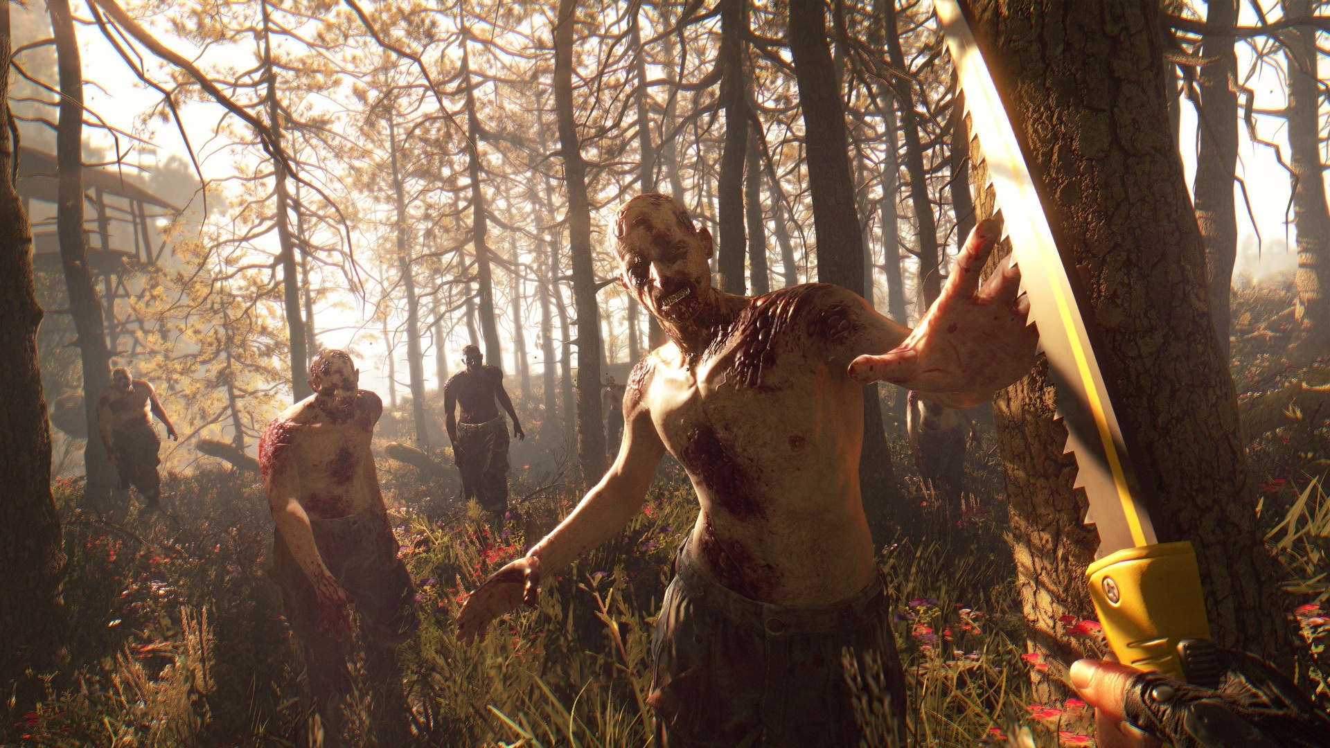 Dying Light The Following Enhanced Edition v2.4.0.13 Incl DLC-GOG