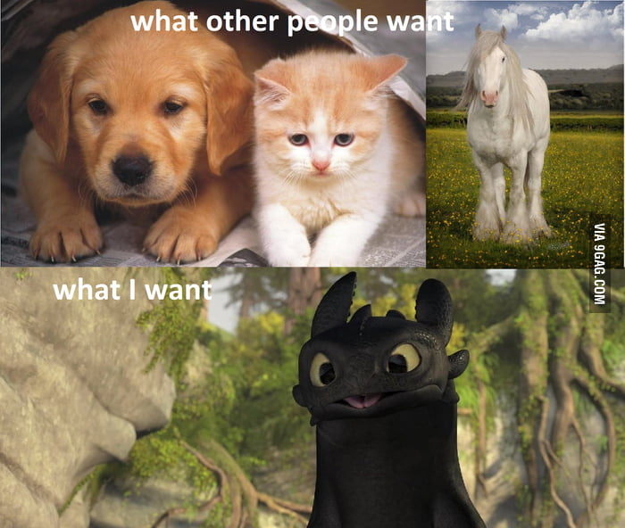 After Watching HTTYD 2 Your Argument Is Invalid 9GAG