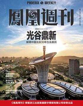 光谷鼎新 香港凤凰周刊2018年第27期