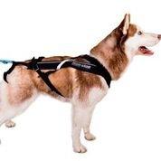 Non-Stop dogwear - Arn茅s para perros 'Non-Stop Freemotion', negro, 7