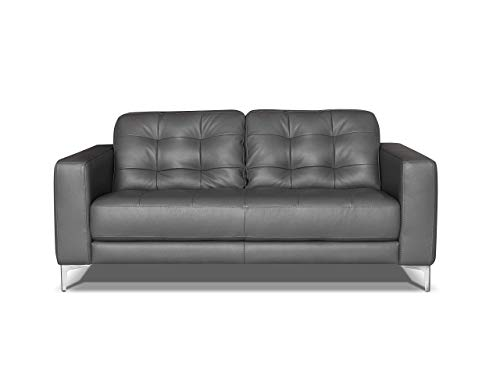 Marchio Amazon -Alkove, divano in pelle modello Holt, stile moderno, 2 posti, colore grigio