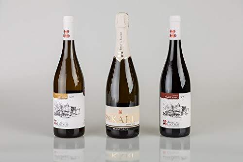 Trittico di 3 bottiglie cantina Terre della Gorai | Solaris, Karl TRENTODOC, Trentino DOC Pinot Nero | Trentino Alto Adige