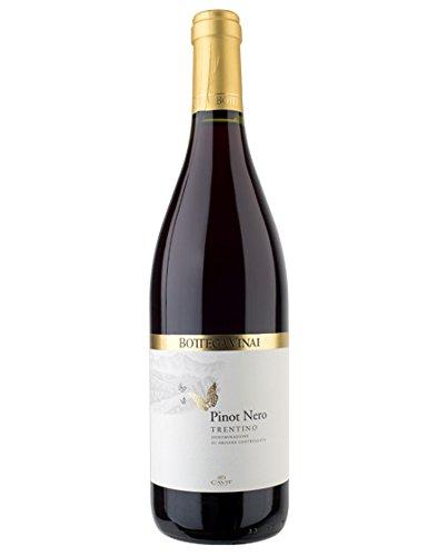 Trentino DOC Bottega Vinai Pinot Nero Cavit 2017 0,75 L