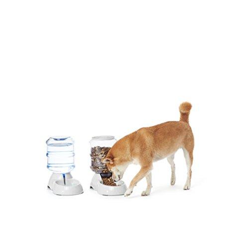 AmazonBasics - Distributore di cibo e distributore di acqua per animali domestici, Piccolo