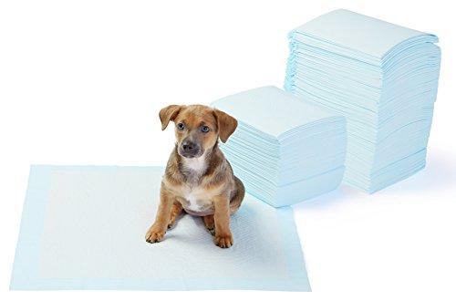 AmazonBasics - Tappetini igienici assorbenti per animali domestici, misura standard, 150 pz