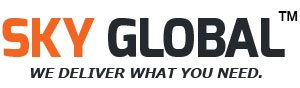 Sky Global Women's Georgette Lehenga Choli (SKY_Lehnga_115_Pink & Blue)
