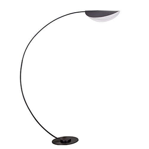 ALF Lampada da Terra LED Simple Postmodern Eye Protection Luci di Pesca per la Decorazione Living Room Sofa Villa con luci da Terra Telecomando (Color : Black, Size : B)