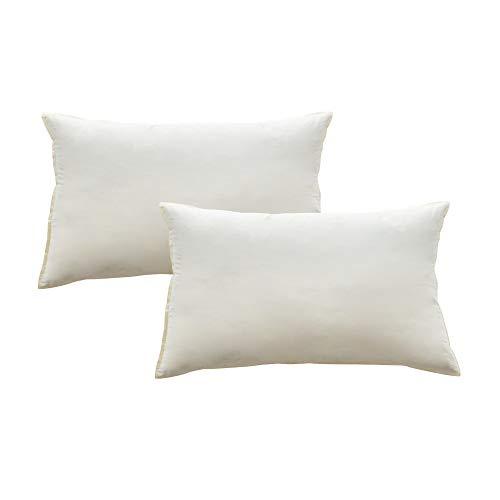 Mack 2 cuscini di piume 40 x 60 cm