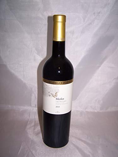 Merlot Bottega Vinai Trentino Doc Cl 75