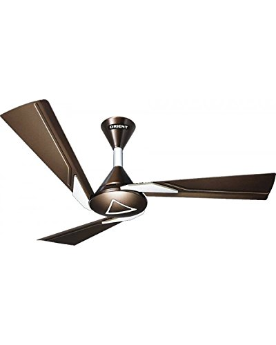 "Orient Electric Orina 48"" Ceiling Fan Chocolate Brown Ivory 48"" 1200Mm"