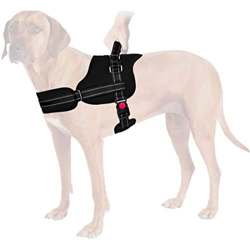 SlowTon Sin tirones Arn茅s de Perro, Suave Malla Acolchada Ajustable F谩cil de Poner y Quitar el arn茅s con Hebilla de Bloqueo para Perros Grande Mascotas