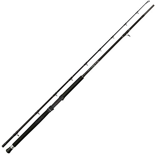 Black Cat Buster Multistyle - Canna da Pesca al siluro per Pesca in Barca, 300-600 g
