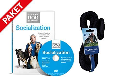 Hundeflüsterer Cesar Millan Leine Hundehalsband Illusion Collar Schwarz gewebte weiche Baumwolle inkl. Socialization DVD Hunde Sozialisierung Grundlagen der Hundeerziehung Essentials of Dog Behavior Hundeflüsterer