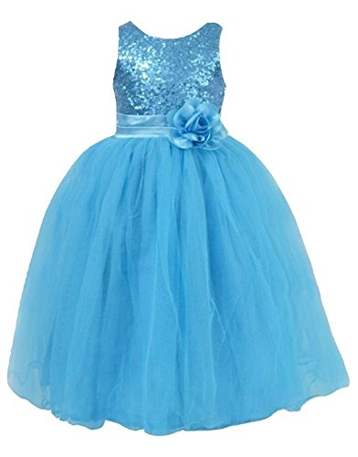 Pink Wings Girls Birthday Party Wear Gown Frozen Elsa Dress Princess Dress Girls Ball Gown Occasion Wear (8-9 Years)