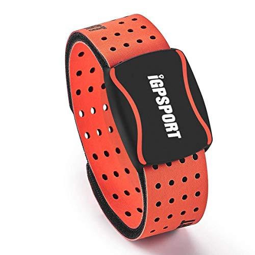 iGPSPORT HR60 pulsómetros Brazalete Compatible con Ant+ y Bluetooth Impermeable IPX7 Sensor Óptico de Frecuencia Cardíaca