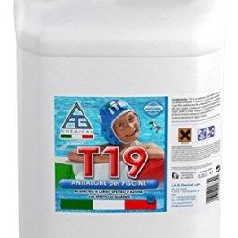 C.A.G Chemical 19T0050 T19 Antialghe Liquido a Basso Potere Schiumogeno