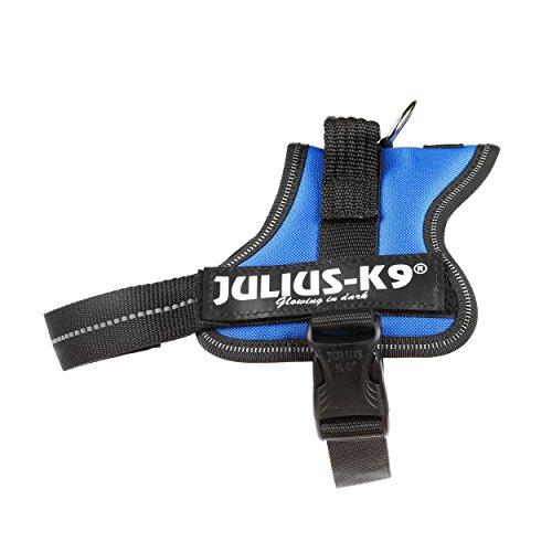 Julius-K9 Mini, 51-67 cm, Azul