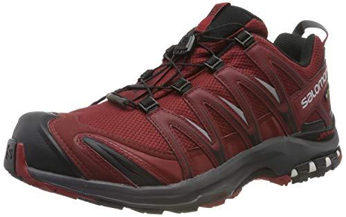 SALOMON XA PRO 3D GTX, Scarpe da Trail Running Uomo, Rosso (Syrah/Ebony/Red Dahlia), 43 1/3 EU