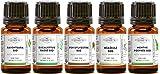 Pack 5 huiles essentielles BIO - Sélection Hiver - Ravintsara, Eucalyptius radié, Menthe poivrée, Niaouli, Pin Sylvestre - MyCosmetik - 5 x 5 ml