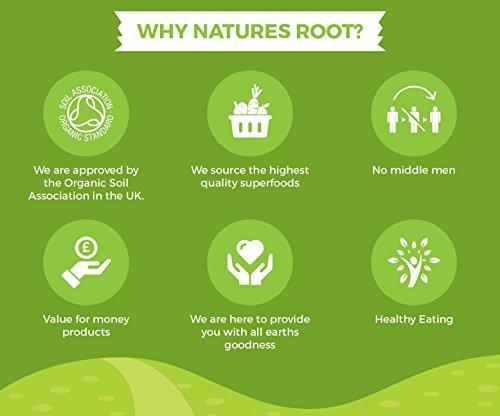 Natures Root Poudre de Baobab Bio 1kg - SUPERALIMENT   VEGETALIEN   VITAMINE C NATURELLE 27