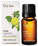 Lime (Italia) - 100% puro, non diluito, biologico, naturale e terapeutico di olio essenziale per aromaterapia diffusore, salute della pelle e Relaxtion - 10 ml - Gya Labs