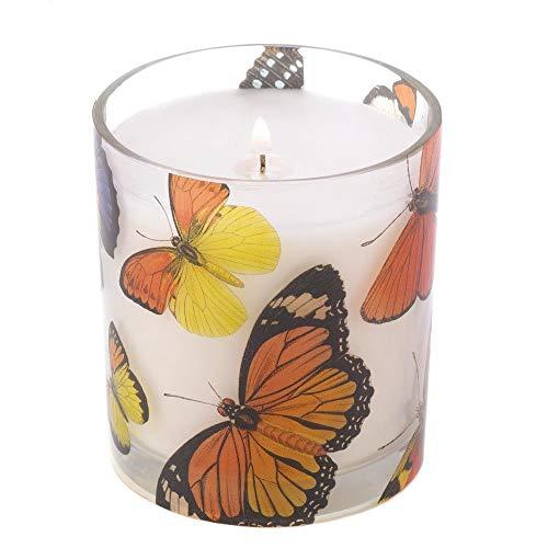 Diseño de mariposas vela & feromona aceite