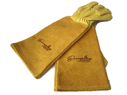 The Exemplary Gardens Rose Pruning Gloves are simple yet stylish. The leather and cow-hide suede provide adequate protection and comfort. There is enough room to grab things and move. Your knuckles will not strain the fabric. This pair of gloves fits both men and women. They are adaptable to light-handed work. If you will be dealing with hardened thorns be careful. The centre is a bit thin compared to the gauntlet. Other than that they look good and feel great.