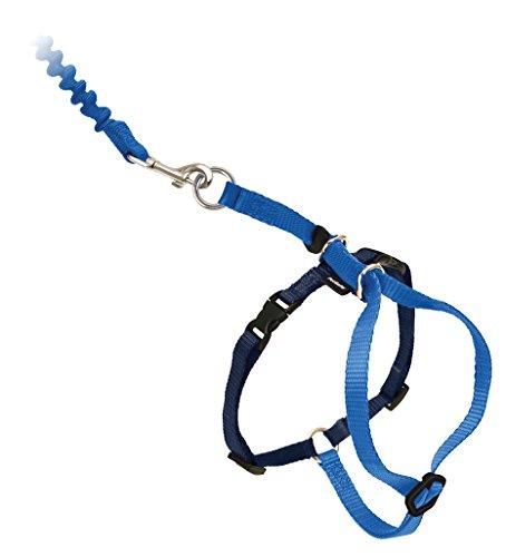 Petsafe Easy Walk ew-ch-s-bl-45gato arnés y plomo pequeñas azul