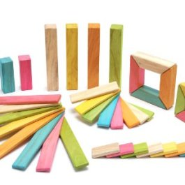 40 Piece Tegu Explorer Magnetic Wooden Block Set, Tints