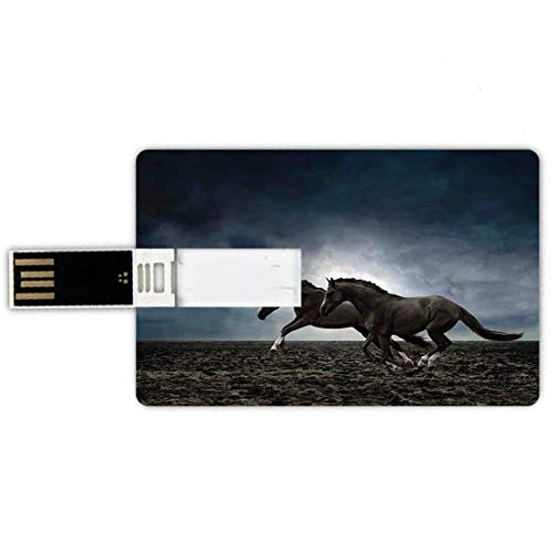 8GB Forma de tarjeta de crédito de unidades flash USB Caballos Estilo de tarjeta de banco de Memory Stick Pareja de caballos corriendo en el campo arado en Tormentoso clima oscuro cielo concepto ecues