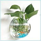Jungen 10cm Acrílico Mini transparente redondo soporte de pared pecera tanque Flores Plantas Jarrón Decoración del hogar