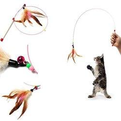 katzeninfo24.de FOCUSPET Katzenangel Spielzeug Spielangel Glocke Katzenspielzeug mit Federn