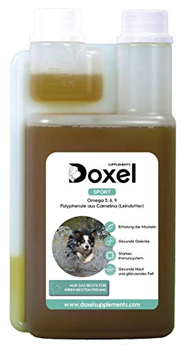 Doxel Sport -500ml Aceite para perros | Suplementos naturales nutricionales | Antioxidantes| Recuperación muscular| Articulaciones sanas |Sistema inmunitario reforzado| Canicross| Agility| Mushing
