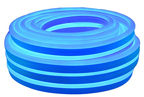 Citra Led Mini Neon Lights, Rope Lights, 16.4FT Long 8MM Thickness, Update 2835 120Led/M, 220V, Included All Necessary Accessories, Flex Durable Super Bright for Outdoor Indoor Decoration (Ice Blue)