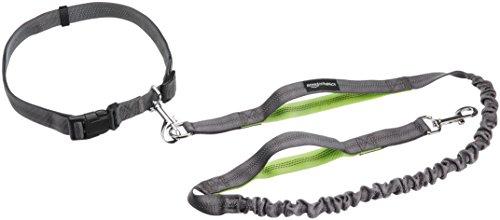AmazonBasics - Correa para perro, elástica, asa doble, 1,21 m, color verde