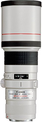 Canon EF 400 mm f:5.6L USM - Objetivo para Canon (distancia focal fija 400 mm, apertura f/5.6, diámetro: 77 mm), negro
