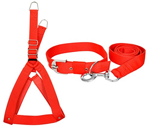 VIP COLLECTION Strong Nylon Everyday Dog Collar Leash Buckle Dog Harness Set Combo Color-Red Medium