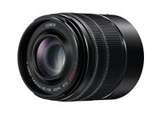 Panasonic Lumix H-FS45150EKA - Objetivo para Cámara Panasonic Lumix G (45-150 mm, F/4.0-5.6,Ois), Color Negro