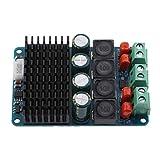 Almencla Zweikanal Verstärker Lautsprecher Endstufenplatine Modude 2x100W TPA3116
